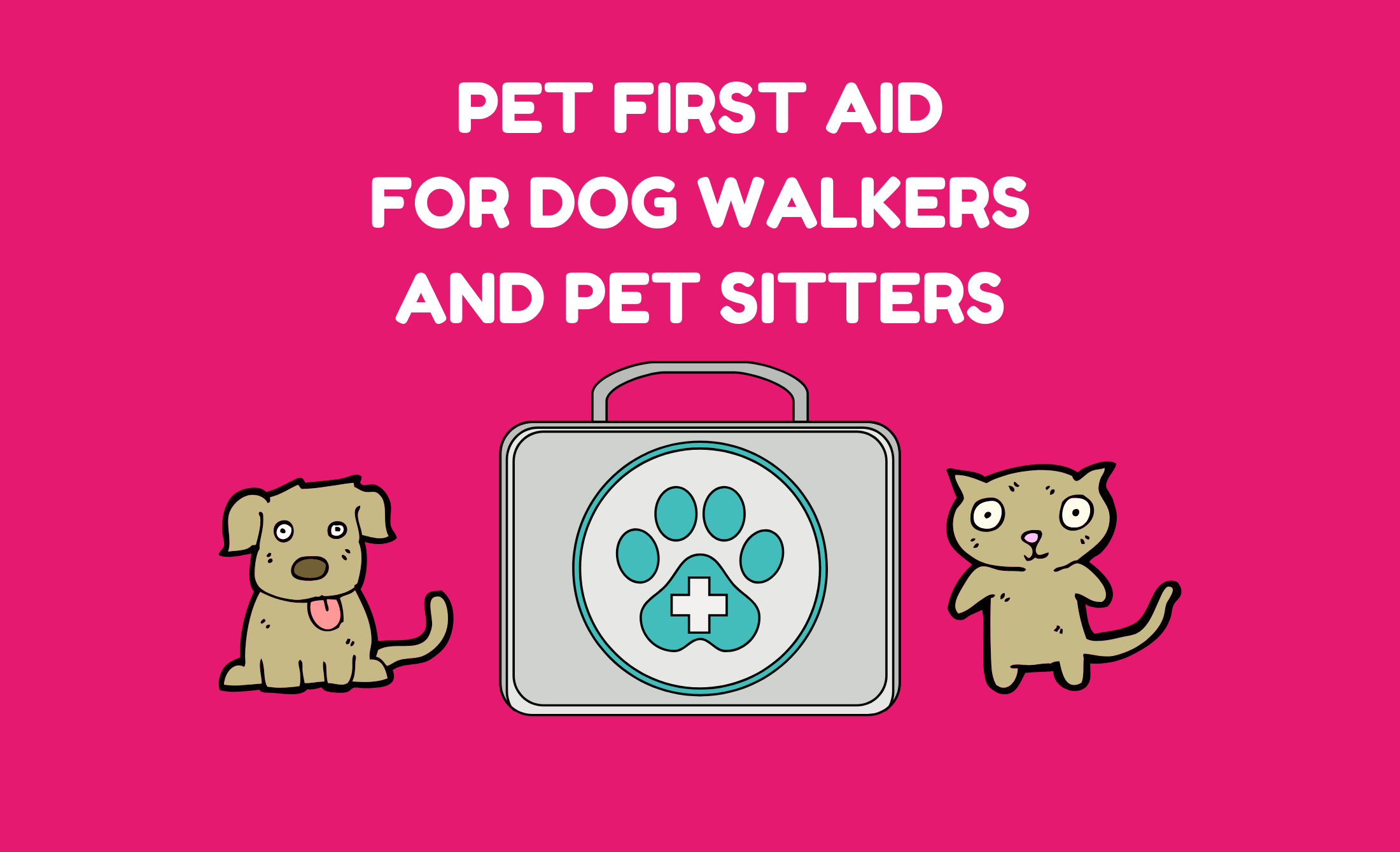 Pet-first-aid-for-dog-walkers-and-pet-sitters