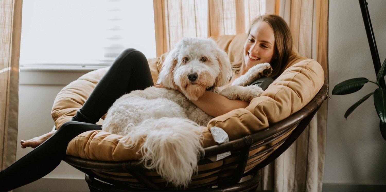 Dog-sitting-checklist.jpg