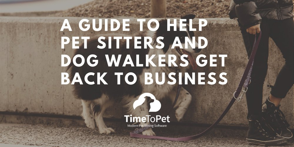 Guide-to-help-pet-sitter-summary.jpg