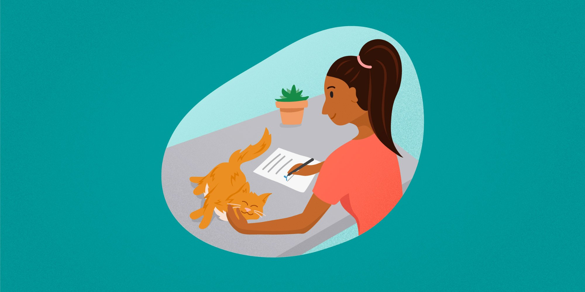 Pet-Sitting-Contracts-Summary.jpg