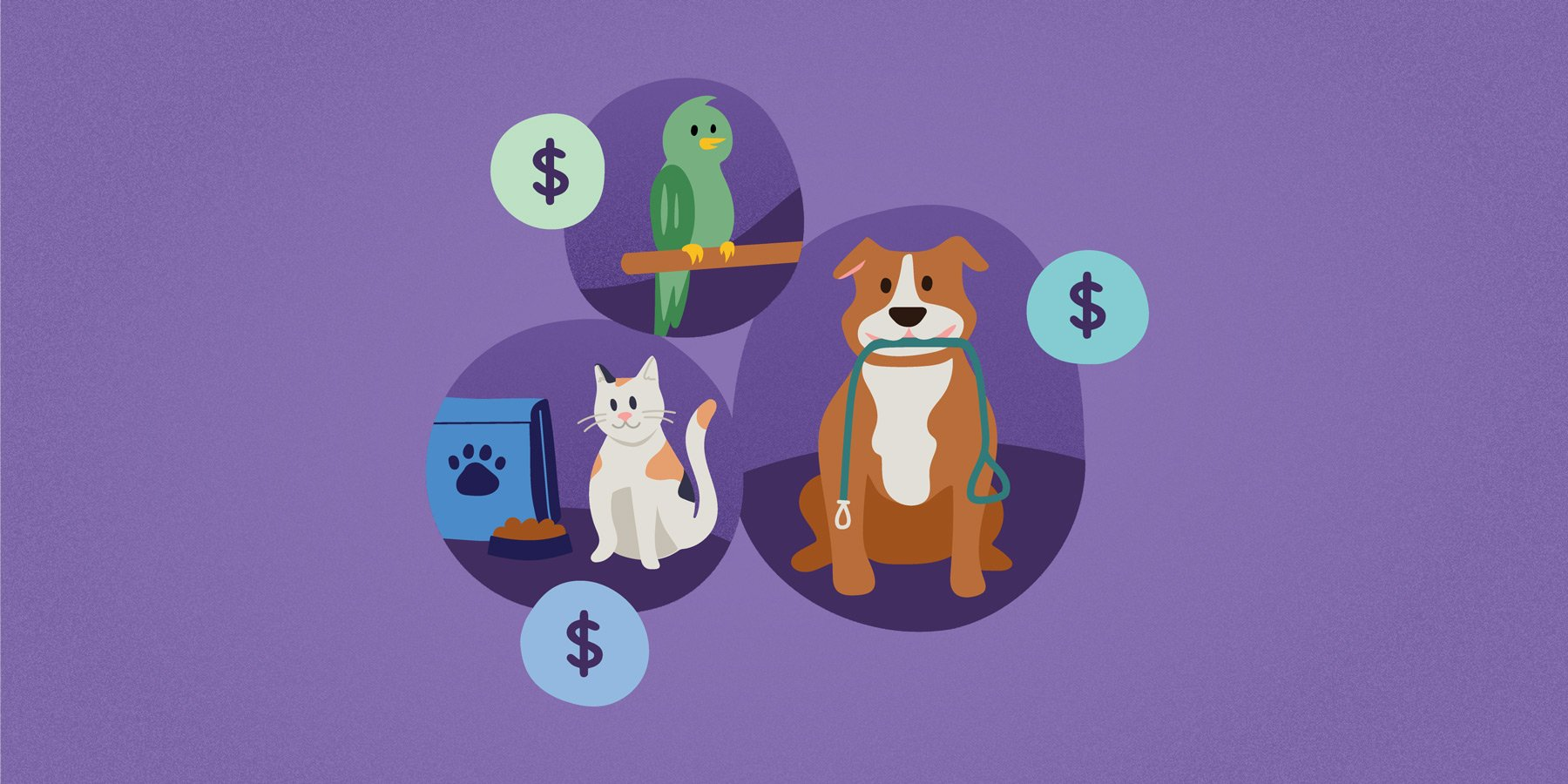 Setting-Pet-Sitting-Rates.jpg