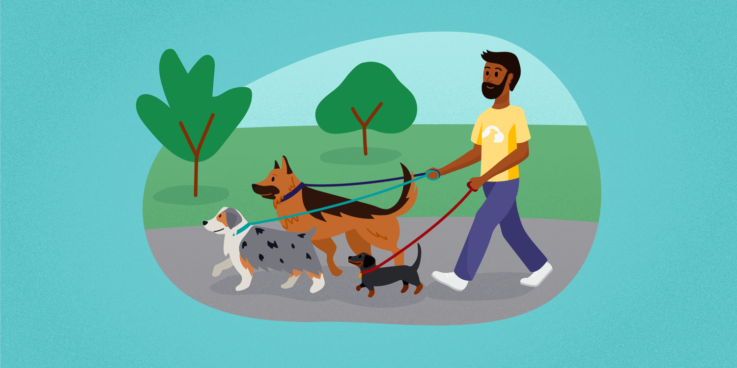 TTP-how-to-start-a-dog-walking-business.png