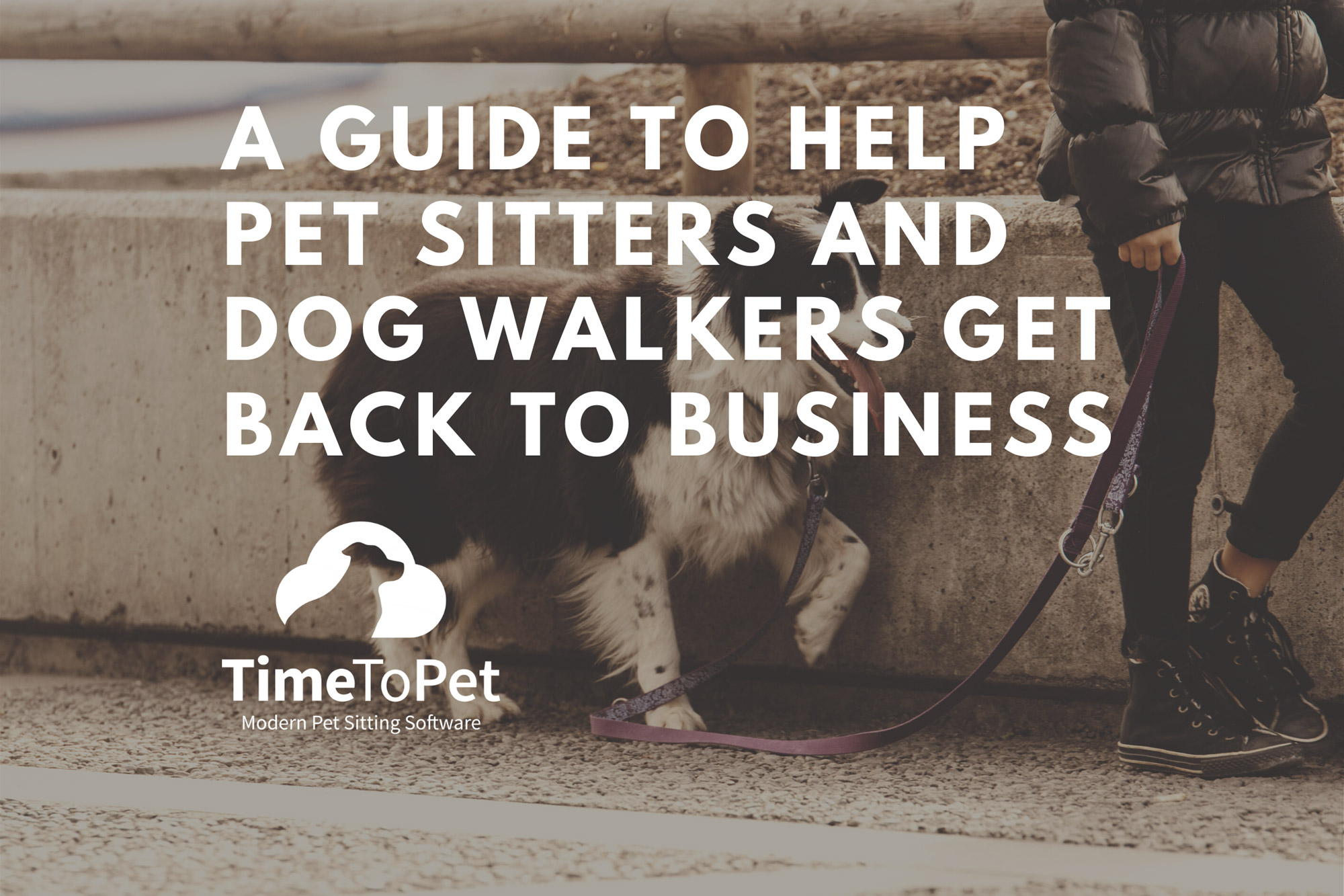 Guide-to-help-pet-sitters-and-dog-walkers