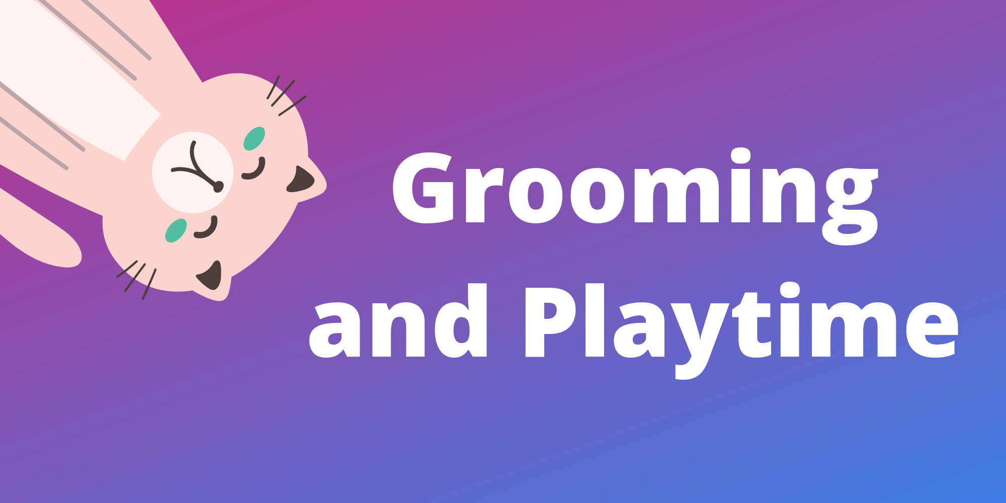 Grooming and Playtim Tips for Cat Sitting