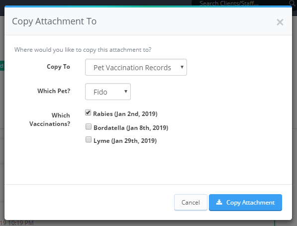 Copy Attachment To Pet Vaccination Tool