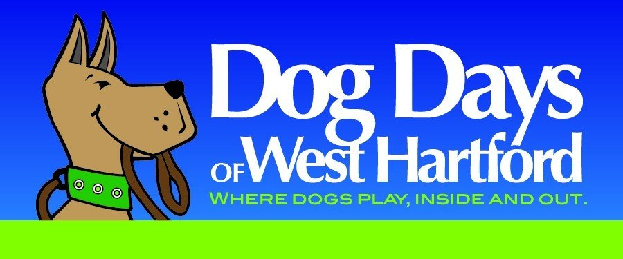 Dog Days of West Hartford Logo