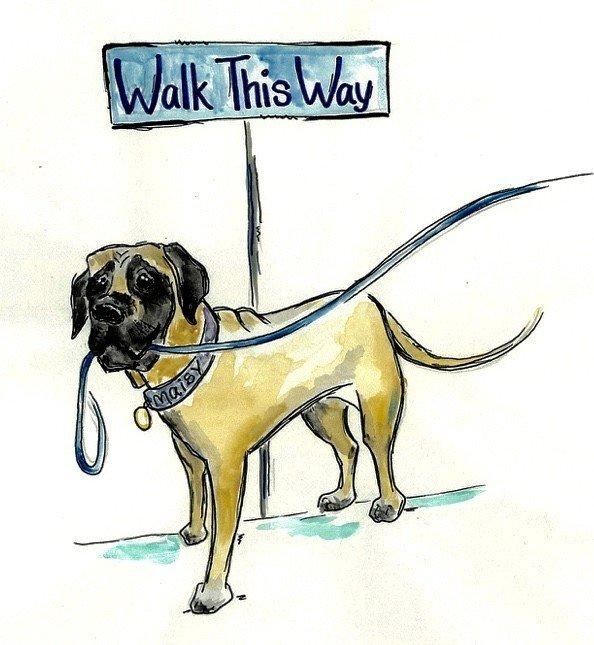 Walk This Way Pet Services Logo