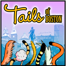 Tails of Boston Logo