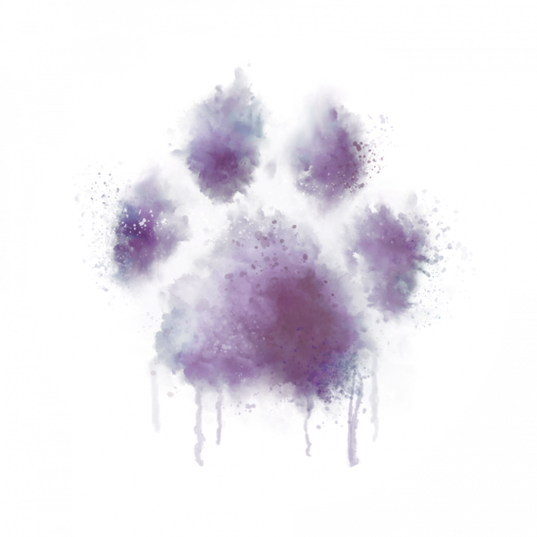 Brooklyn Paw House (Ditmas Paws) Logo