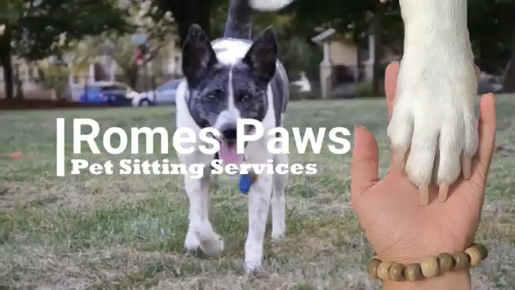 Romes Paws Pet Sitting Logo