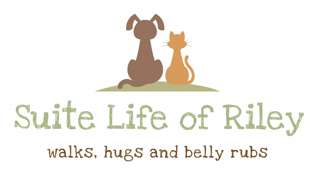 Suite Life of Riley Logo