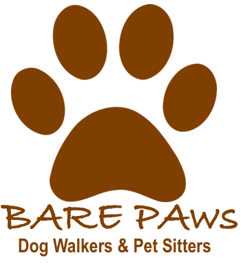 Bare Paws NYC Dog Walkers & Pet Sitters Logo