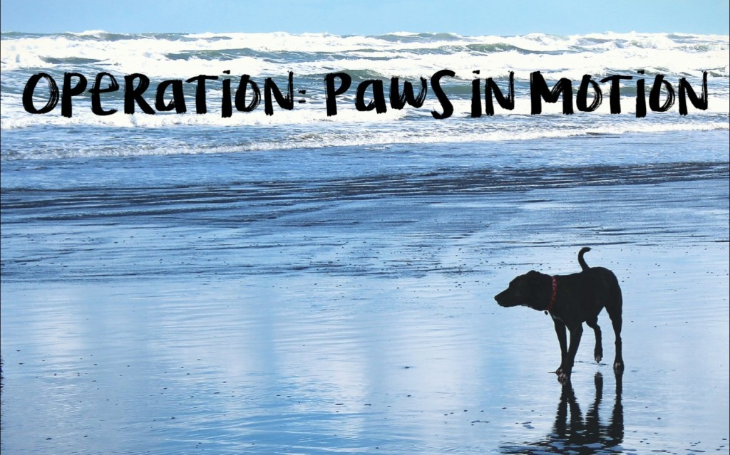 Operation Paws In Motion Logo