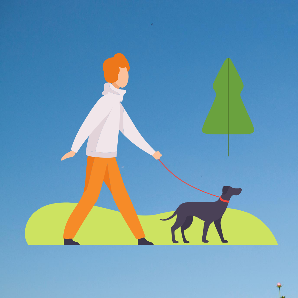 20200728220626-start-a-dog-walking-business-icon.png