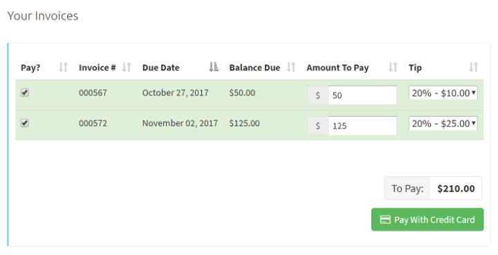 20171031160831-Portal Payment With Tip.png