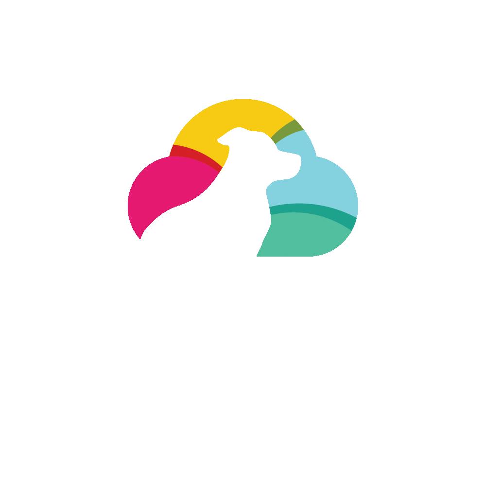 Branding Time To Pet