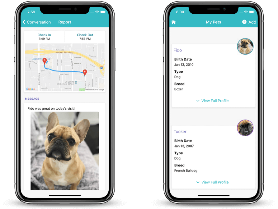 dog walking client app