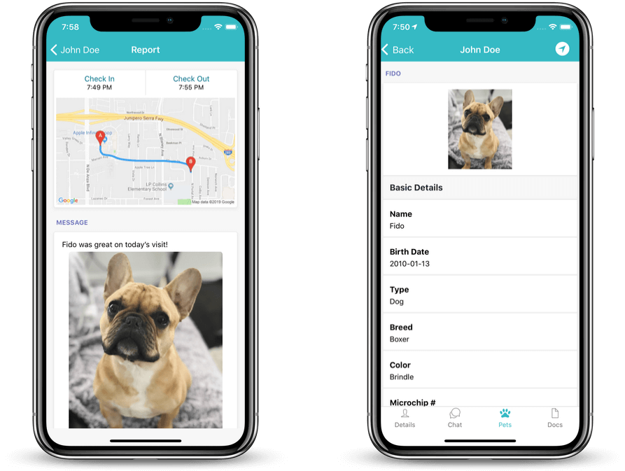dog walker application