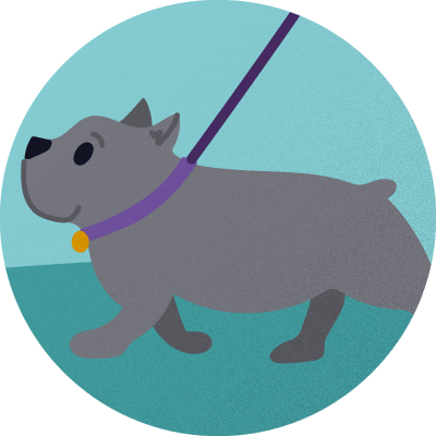 dog walking badge